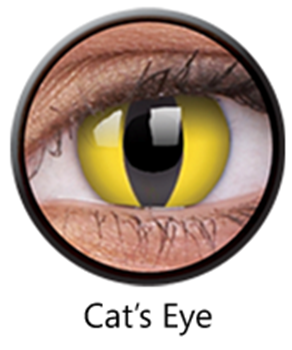 Picture of Yellow Cat Eye