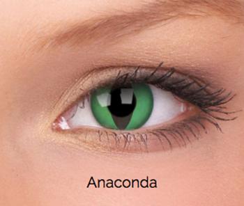 Imagen de Anaconda- 3 meses